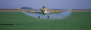 Crops that are GMOs often need more herbicides
