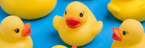 Plastics in your home like these cute duckies could contain recently banned phthalates