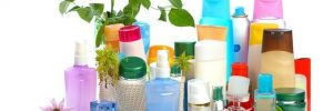 Endocrine Disrupting Chemicals Adolescent Girls