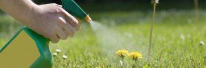 Herbicide Glyphosate