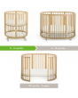 Bassinet, Crib, & Toddler Bed (all included)